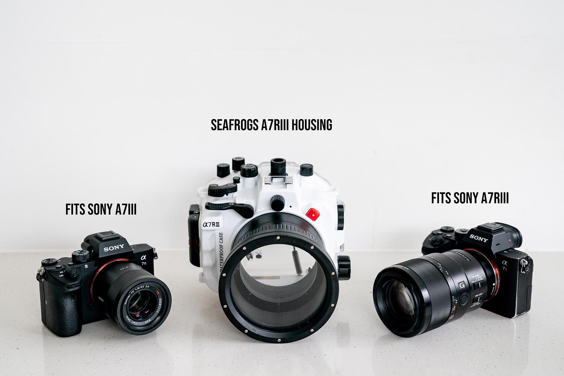 Sea Frogs A7III / A7RIII Water Housing - review for surf
